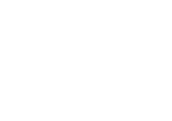 Discord Partner badge